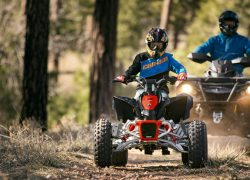 can-am, canam, DS 90, ds, 90, 90 hp, 2017, quadriciclo, atv