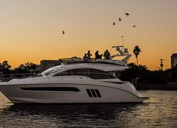 sport yachts, sundancer, flybridge, 510